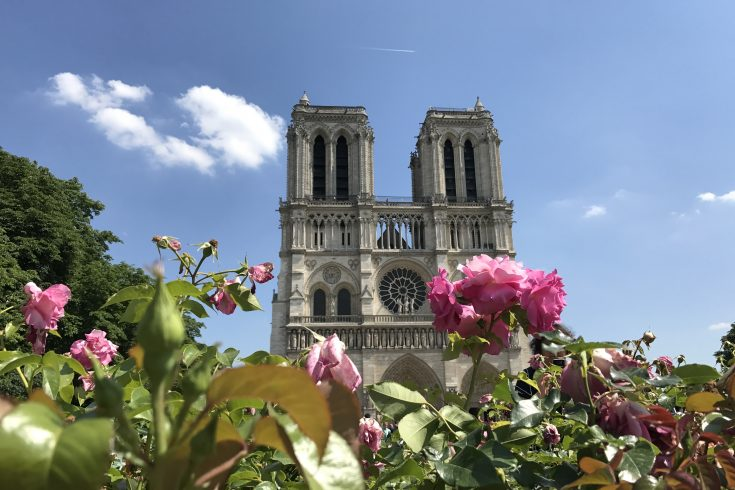 Notre Dame; Mercedes Santana