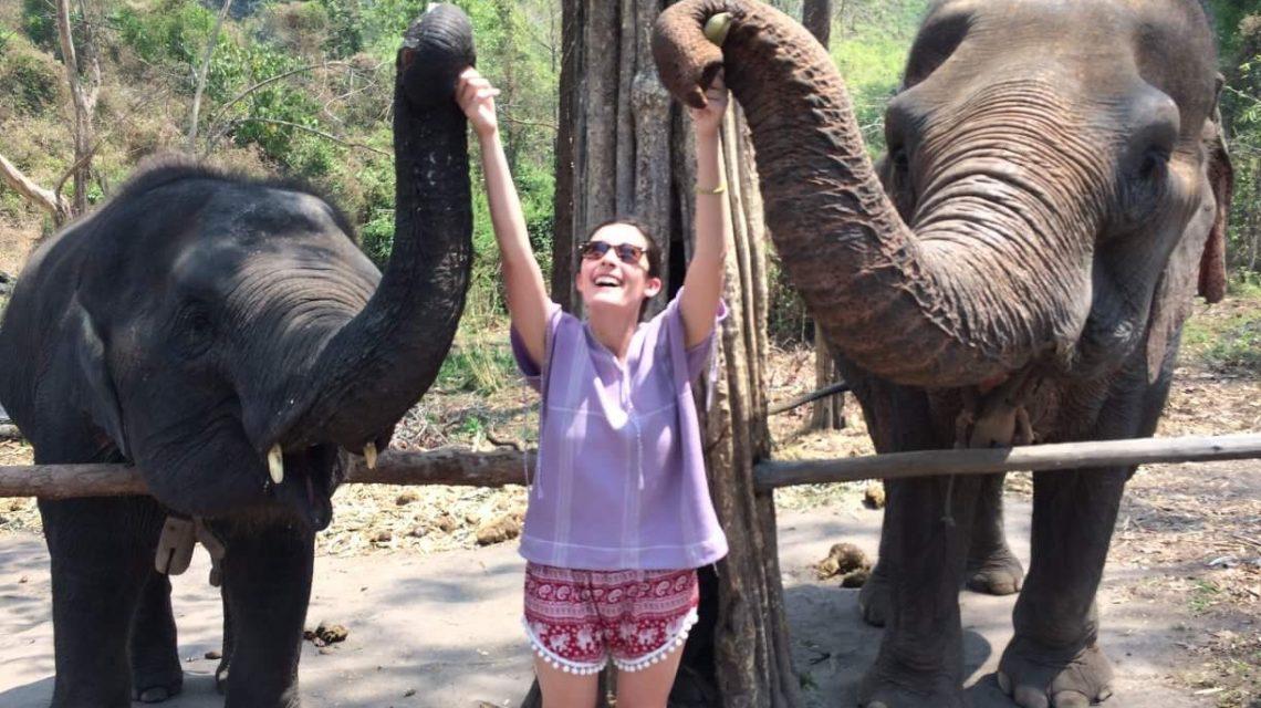 Feeding Elephants_Mercedes Santana